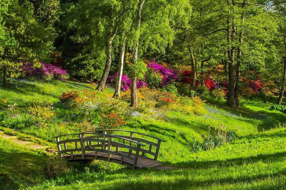 Classe Ulis : Les jardins et les parcs